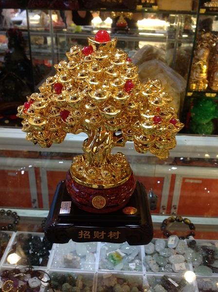 Cây Kim Tiền Phát Lộc - 01372