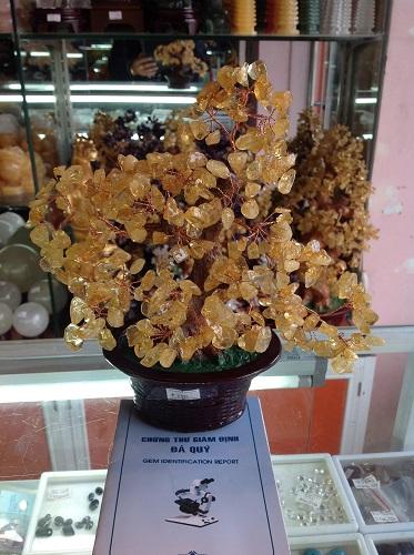 Cây Tài Lộc Đá Thạch Anh Vàng Tự Nhiên - CLV118